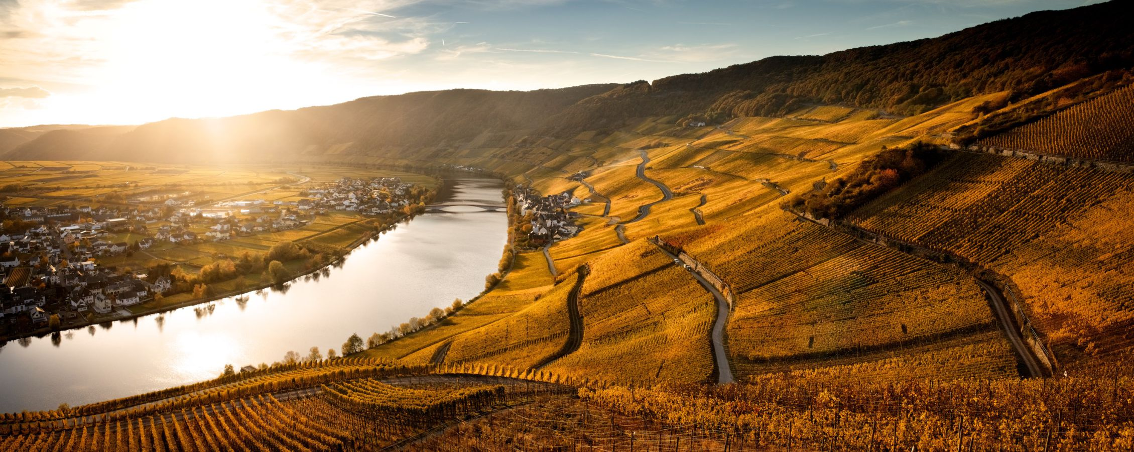 Weingut-Schloss-Lieser-Piesporter-Goldtroepfchen©by-Mekido