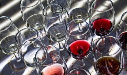 wine-tasting-6559177_1920_1550x916_bijgeknipt